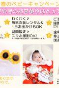 ブログお宮参り春