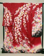 No.69 赤地しだれ桜